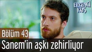 Erkenci Kuş 43. Bölüm   Sanem'in Aşkı Zehirliyor