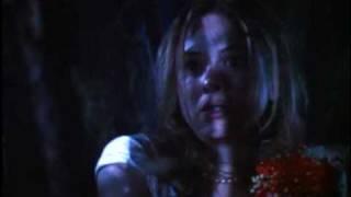 Texas Chainsaw Massacre: The Next Generation (1994) Video