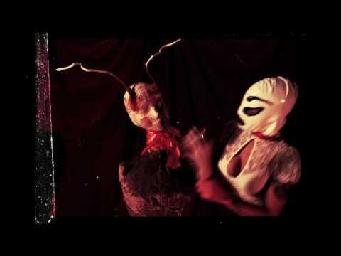 """Sólstafir - """"She Destroys Again"""" Official Music Video"""