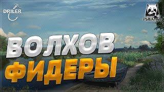 Река Волхов - Ловим и качаем донки. Стрим Русская рыбалка 4