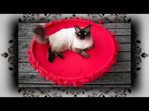 DIY 😻 Hula Hoop Outdoor Knoten Schaukel für Katzen | no sew Cat swing