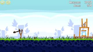 Fegel-Birds Gameplay
