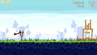 Fegel-Birds Gameplay