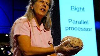 TED Talk – Stroke of Insight
