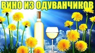 ВИНО ИЗ ОДУВАНЧИКОВ - РЕЦЕПТ