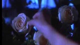 Practical Magic - This Kiss