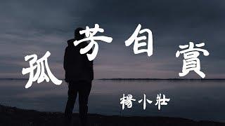 孤芳自賞 - 楊小壯 - 『超高无损音質』【動態歌詞Lyrics】
