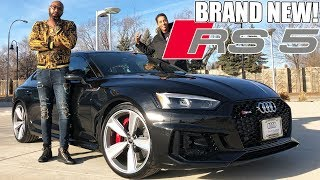 THE BRAND NEW 2019 AUDI RS5 REVIEW! FROM A TALL GUYS PERSPECTIVE..