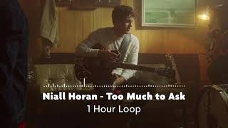 Niall Horan   Too Much To Ask (1 Hour Loop)