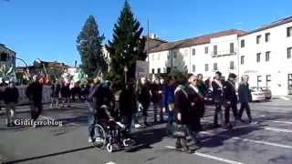 preview picture of video 'Dolo, protesta a difesa ospedale ASL 13'
