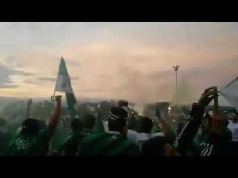 """Recibimiento bus Deportivo CALI vs bucaramanga | Greenbook"" Barra: Frente Radical Verdiblanco • Club: Deportivo Cali"