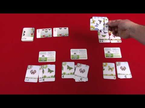 The Butterfly Garden Preview - This Board Game Life