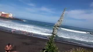 Интересные места на острове Тенерифе: город Пуэрто-де-ла-Крус