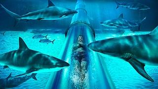 أخطر ١٠ زلاجات مائية في العالم
