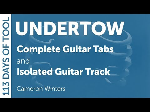 Tool - Undertow - Guitar Cover - 113 Days of Tool