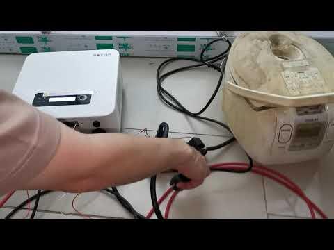 Gomba brutil prosztatitis