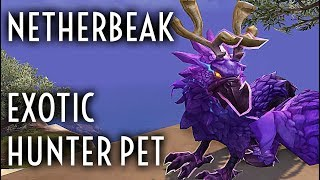 WoW Guide - Netherbeak - Exotic Feathermane Hunter Pet
