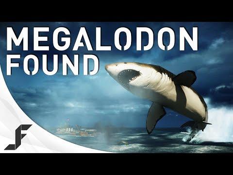 hqdefault - Un Megalodon oculto en el Battlefield 4
