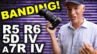 Canon EOS R5 Image Quality Vs R6, R, 5D Mk IV, 5DS-R & Sony A7R IV