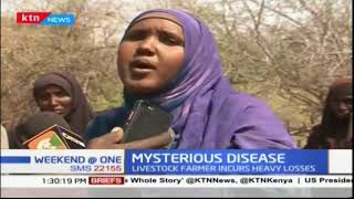 Livestock farmers incur heavy losses in Tana River