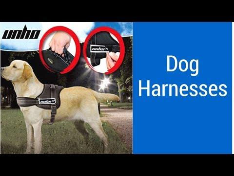 Top 3 Best Dog Harnesses Can Buy - Reviews Of Dog Harnesses