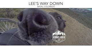 Lee's Way Down  |  JULY 2017  |  No dogs were harmed in the making of this video.