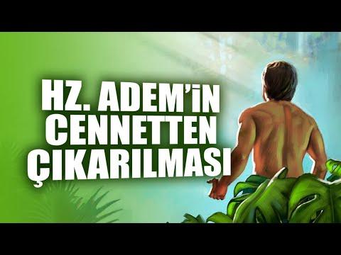 Hz. Adem'in Cennetten Çıkarılması ve Evrim Teorisi / İnsanlık Nasıl Başladı ?