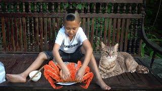 Cua Không Lối Thoát - Con Mèo Sướng Nhất Việt Nam Khi Được Mao Đệ Nướng Cua Cho Ăn