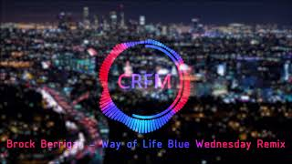 Brock Berrigan  -  Way of Life (Blue Wednesday Remix)    |  Copyright Free Music   |