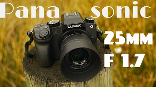 Panasonic Lumix G 25mm F/1.7 real world review H-H025 ASPH, best street photography lens?