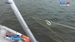 Нарьян-мар рыбалка на семгу