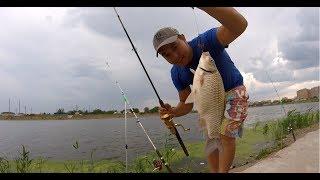 Платная рыбалка возле астана