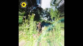 Rex Orange County   Sunflower (Official Audio)