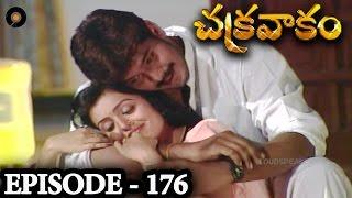 Episode 176 | Chakravakam Telugu Daily Serial