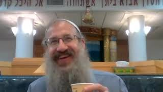 קורות חייו ותורותיו של הרב שלמה מקרלין