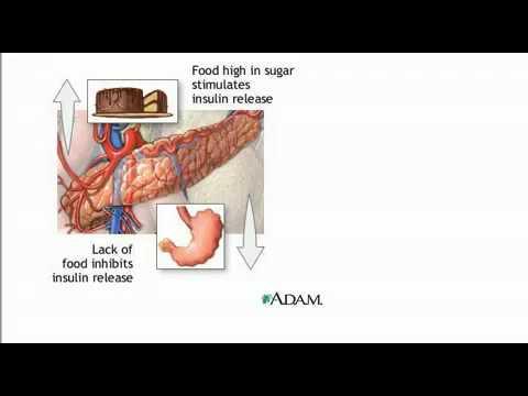 Wie und was Sie können Diabetes heilen