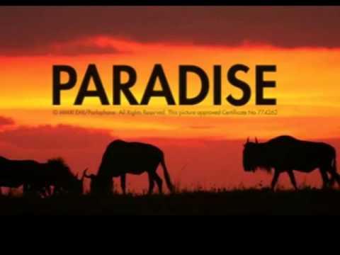Coldplay Paradise (instrumental mix)