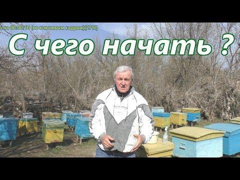 С ЧЕГО НАЧАТЬ? Видео для начинающего пчеловода.