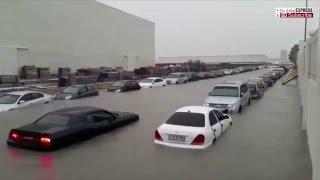 Most Shocking Dubai Rain Videos