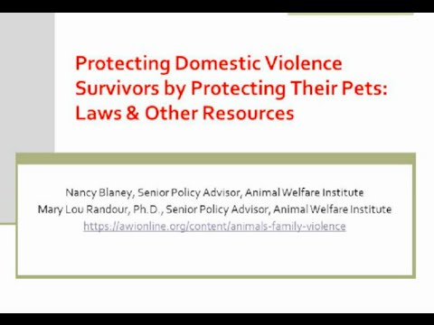 Expanding Safety and Support Services For Survivors of Domestic Violence and Their Pets