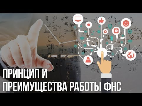 ФНС России: механизм работы налоговых органов