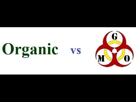 Organic Gardening Vs GMO