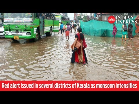 Red alert issued in several districts of Kerala as monsoon intensifies