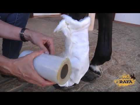Artrita deformantă a tratamentului articulației gleznei