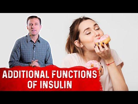 Klettenwurzel und Typ-2-Diabetes mellitus
