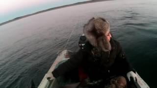 Промысловая Рыбалка ОМУЛЬ