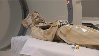 300 Years After Death, Mummies Get An Autopsy In Santa Ana