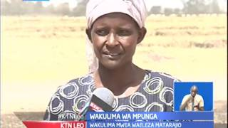 Wakulima wa Mpunga kaunti ya Kirinyaga walalamika kuhusu kiangazi