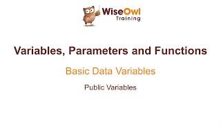 Excel VBA Online Course - 4.1.5 Public Variables
