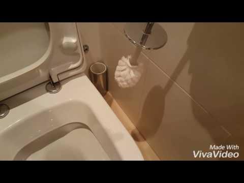 Escobilla autolavable para inodoro  (vídeo completo)